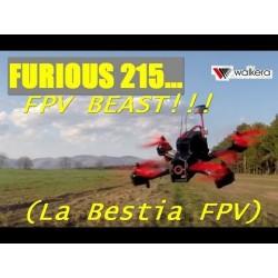 Walkera Furious 215 - RTF
